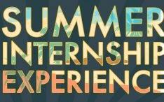 Summer training institute