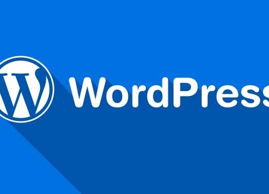WordPress Websites For Your Internet Marketing Success